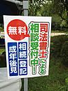 Asagao5_3